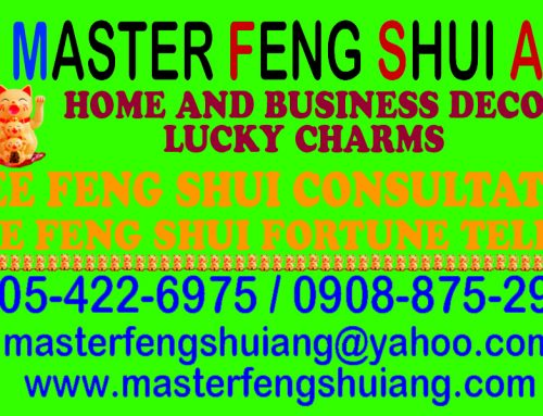MASTER FENG SHUI ANG SERVICES – FREE CONSULTATION
