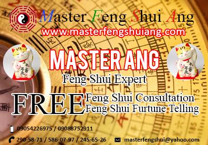 master feng shui ang