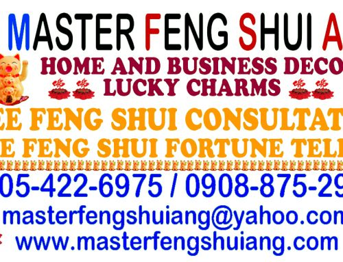 MASTER FENG SHUI ANG – PSYCHIC FREE CONSULTATION MANILA
